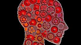 Enfoque cognitivo conductual  timeline