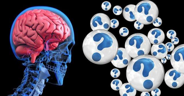 Frederic Bartlett Teoría de los esquemas de la mente