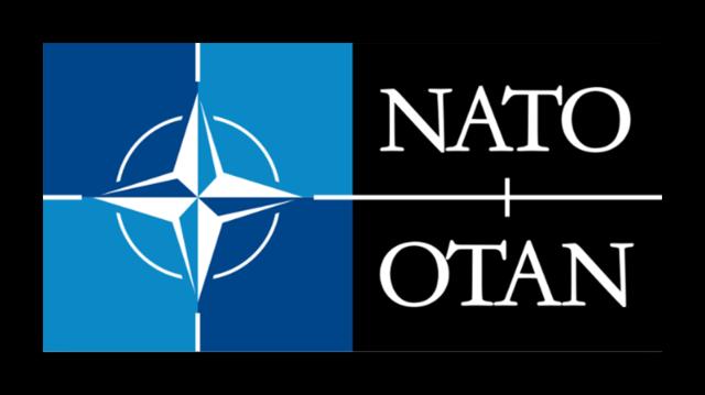 International Organization: NATO