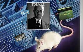 Primer laboratorio de ratas de Tolman