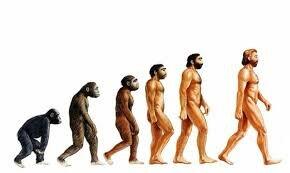 1851 Evolución.