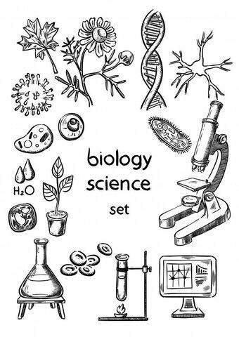Desarrollo del carácter general de la ciencia biológica.