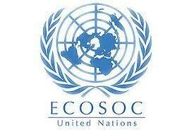 Estudio Ecosoc