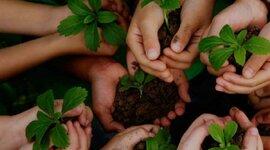 Educación Ambiental en Colombia  timeline