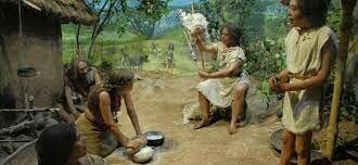 Sédentarisation et invention de l'agriculture