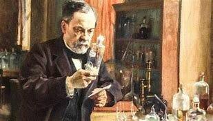 Primer vacuna antirrábica