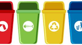 Cómo separar y clasificar correctamente la basura timeline