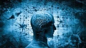 Relación entre ciencia y humanidades