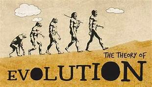 Begin of the Theory of Evolution