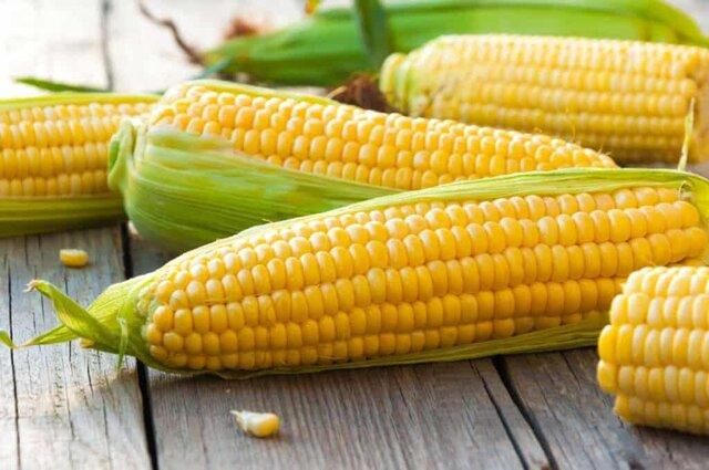 Los componentes químicos del maíz