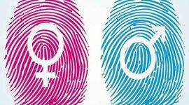 La instrumentalidad (Masculinidad) y expresividad (Feminidad) timeline