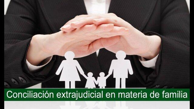CONCILIACION FAMILIAR Y CIVIL 2010