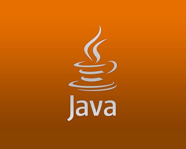 Sun Microsystems anunció formalmente el nacimiento de Java.