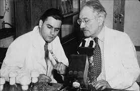Albert Schatz y Selman Waskman