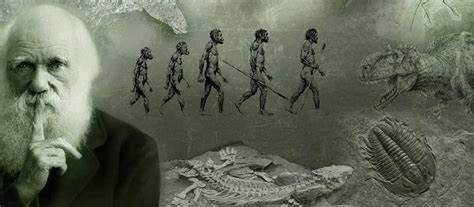 Views of Evolution