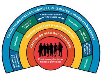 Determinantes Sociales en Salud