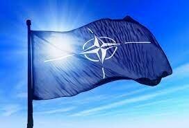 Constitucion de la OTAN