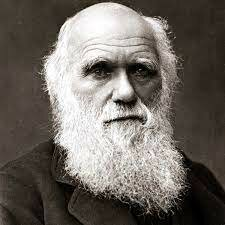 Darwin's Life After