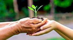 Creación del Programa de Naciones Unidas para el Medio Ambiente (PNUMA)
