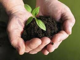 Creación del primer Ministerio del Ambiente de América Latina