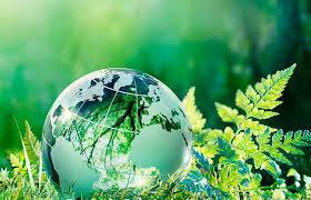 Elaboración del Plan de Acción para Medio Ambiente en América Latina y el Caribe
