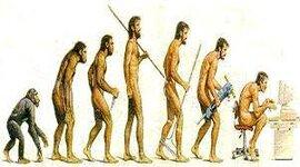 Evolución histórica de la administración  timeline