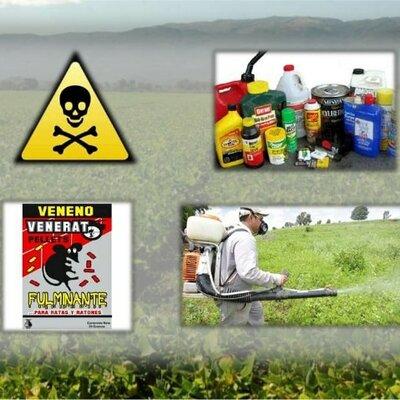 línea de tiempo de insecticidas timeline
