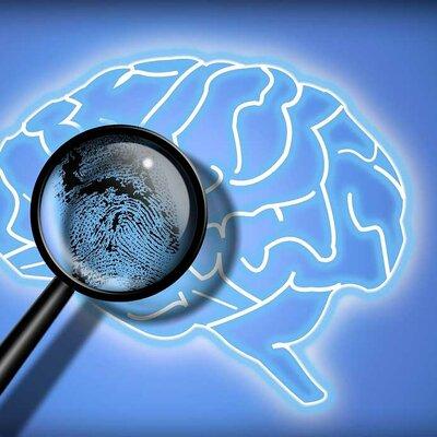 evolución de las diferentes teorías de la clasificación de la mente Criminal. timeline