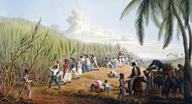 El arte en el caribe