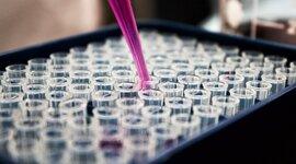 Antecedentes de la Biotecnología timeline