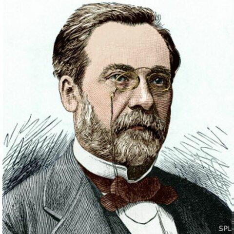 siglo XIX Louis Pasteur