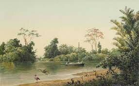 Trinidad y Tobago, Caroni River, Trinidad-Michel Jean Cazabon