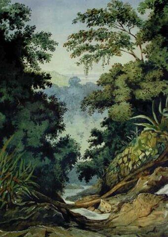 Trinidad y Tobago, St Ann's Valley-Margaret Mann