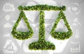 Ley del Medio Ambiente.