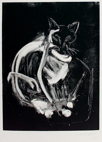 Barbados, Cat - Gwendolyn Knight