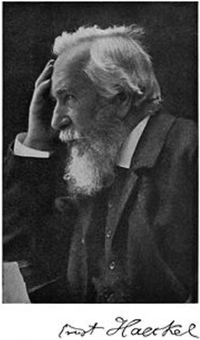 """The term """"Ecology"""" is coined, Ernst Haeckel"""