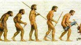 Evolución y desarrollo de la administración timeline