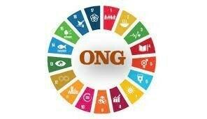 1948 Creación de organizaciones no gubernamentales Internacionales (ONGI