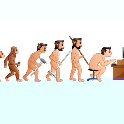 Historia de la sociología timeline