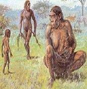 Homínidos primitivos