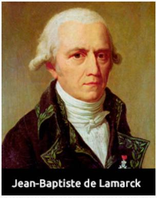 Transformismo 1809