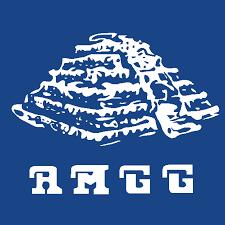 Asociación Mexicana de Geriatría y Gerontología (AMGG).