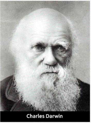 Teoría de la evolución 1859