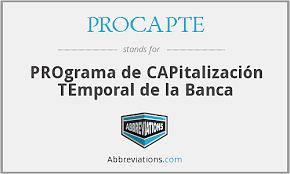 1995 Programa de Capitalización Temporal (PROCAPTE)