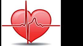 Heart Matters' Data Chain of Custody Timeline
