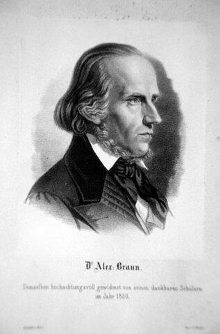 Heinrich (1805-1877).