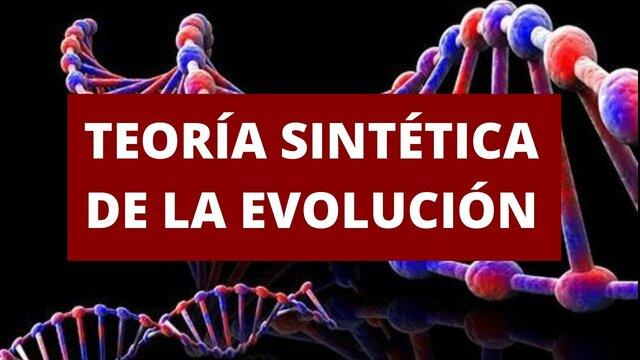 """Teoría Sintética o """"Neodarwinista Moderna"""""""