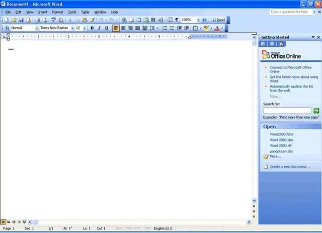 MS-Office 2003