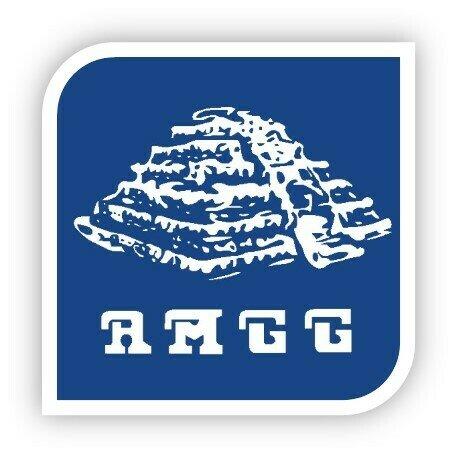 Asociación Mexicana de Geriatría y Gerontología. (AMGG)