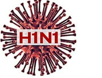 En mexico aparece un brote de gripe porcina, posteriormente llamada gripe A H1N1